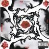 Blood Sugar Sex Magik (Deluxe Edition)