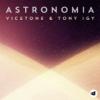 Vicetone & Tony Igy - Astronomia Mp3 Download