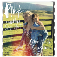 download lagu P!nk & Willow Sage Hart - Cover Me In Sunshine
