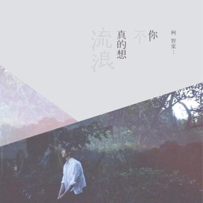 柯智棠 - 你不真的想流浪