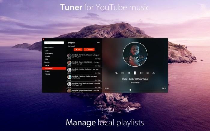 Tuner for YouTube music Screenshot 05 1353w1n