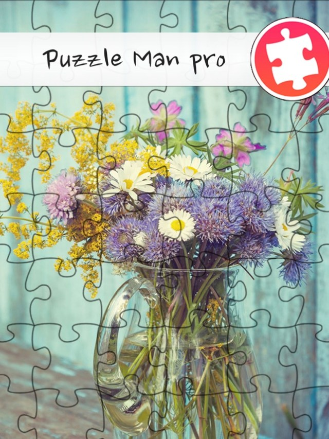Puzzle Man Pro Screenshot