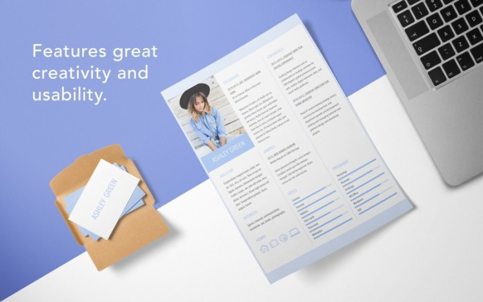 2_Resume_DesiGN_Templates.jpg