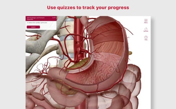 Anatomy & Physiology Screenshot 5