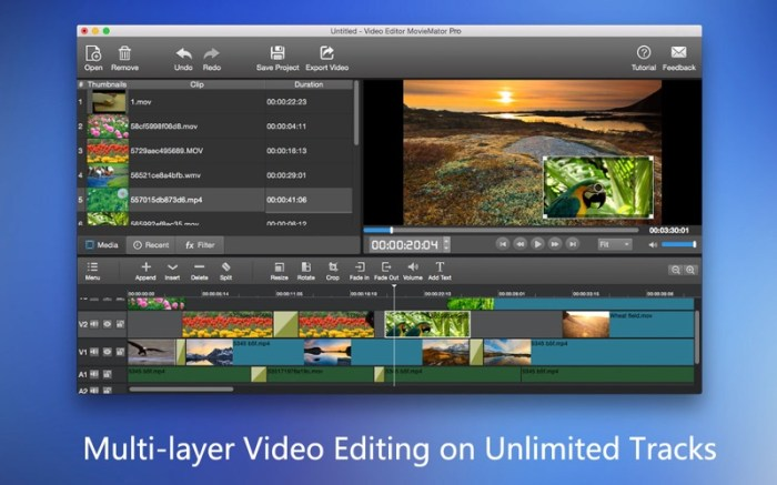 MovieMator Video Editor Pro Screenshot 02 136ue9n