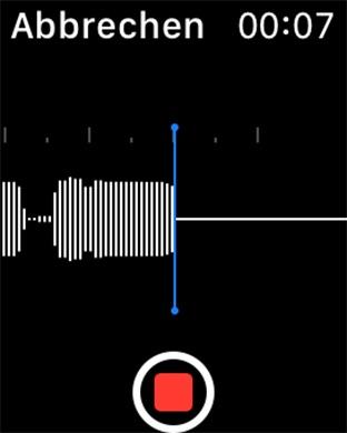 Diktiergerät (PRO) Screenshot