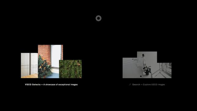 VSCO: Photo & Video Editor Screenshot