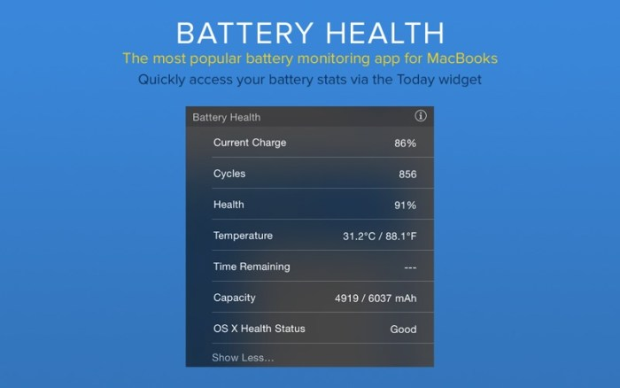 4_Battery_Health_Monitor_Stats.jpg