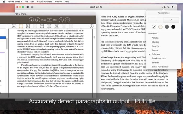 2_PDF_to_EPUB_.jpg