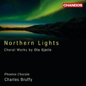 Ola Gjeilo, Harrington String Quartet, Charles Bruffy, Phoenix Chorale, Emmanuel Lopez, Alison Chaney & Ted Belledin - Gjeilo: Northern Lights  artwork