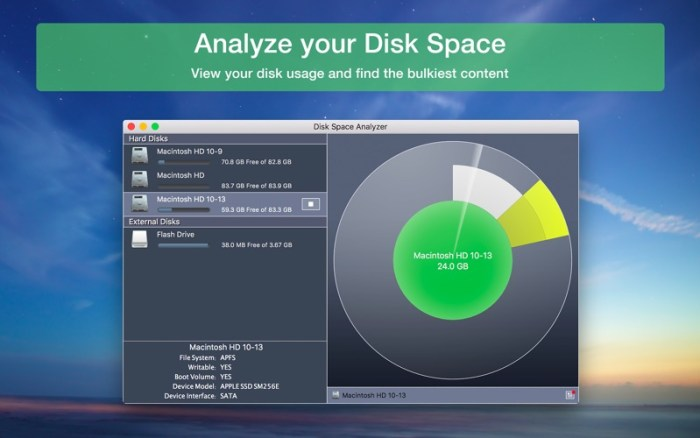 1_Disk_Space_Analyzer_Inspector.jpg