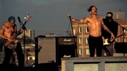 The Adventures of Rain Dance Maggie - Red Hot Chili Peppers