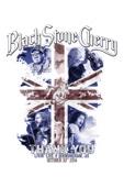 Black Stone Cherry - Black Stone Cherry - Thank You - Livin' Live, Birmingham, UK, October 20th 2014  artwork