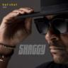 Shaggy - Electric Avenue (Hot Shot 2020)