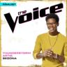 Thunderstorm Artis - Sedona (The Voice Performance)