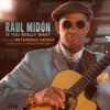 Raul Midón, Metropole Orkest & Vince Mendoza - If You Really Want  artwork