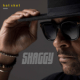 Download Shaggy - Angel (Hot Shot 2020) [feat. Sting] MP3