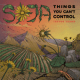 Download SOJA - Things You Can't Control (feat. Trevor Young) MP3