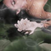 CARELESS & Nadine Lustre - Wildest Dreams