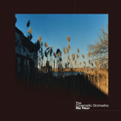 The Cinematic Orchestra - To Build a Home (feat. Patrick Watson)