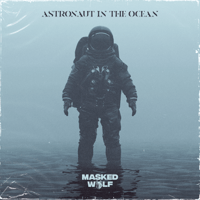 download lagu Masked Wolf - Astronaut In The Ocean