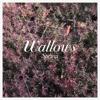 Wallows - Spring - EP  artwork