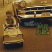 Mr. Big - Just Take My Heart