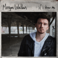Download lagu Morgan Wallen - Chasin' You