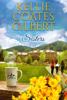 Kellie Coates Gilbert - Sisters (Sun Valley Series, Book 1)  artwork