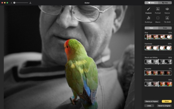 2_Colorific_Photo_Effects_Black_White_Color.jpg