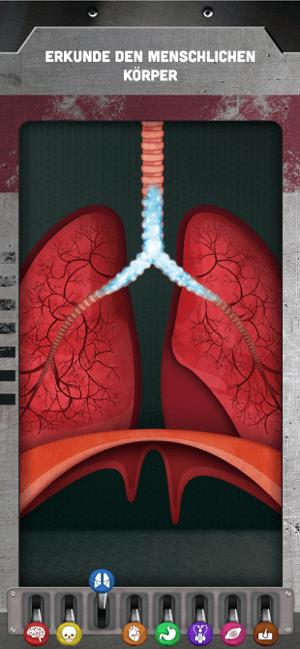 Wie funktioniert mein Körper? Screenshot