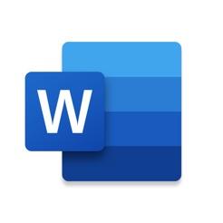 ?Microsoft Word