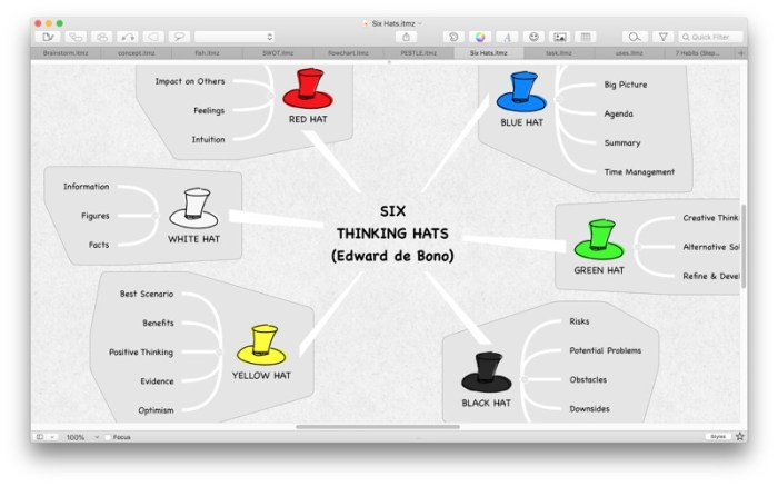 iThoughtsX (mindmap) Screenshot 03 1353w1n