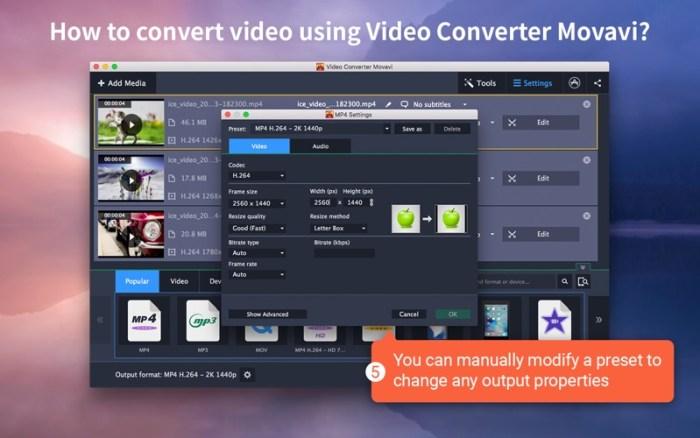 3_Video_Converter_Movavi.jpg