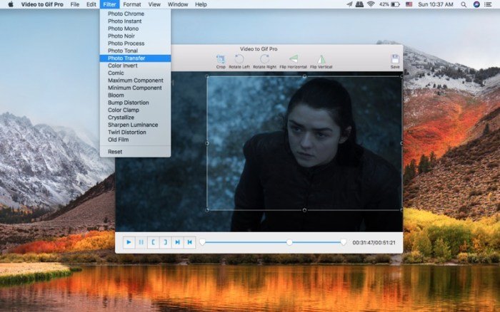 3_Video_to_GIF_Pro.jpg