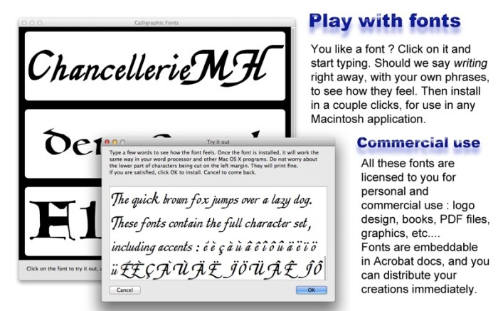 Calligraphic Fonts Screenshot 02 ikzebvn
