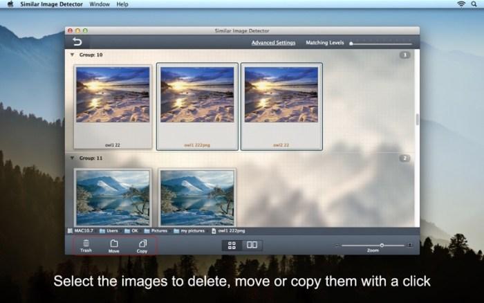 5_Similar_Image_Detector.jpg