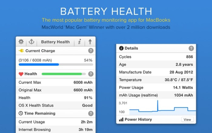 1_Battery_Health_Monitor_Stats.jpg