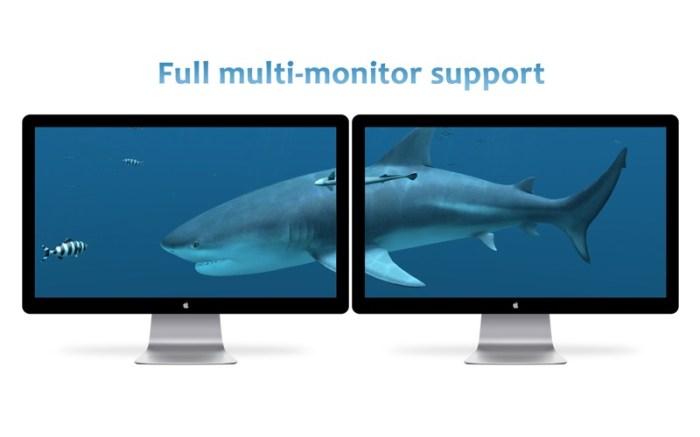 Sharks 3D Screenshot 04 k6fachy