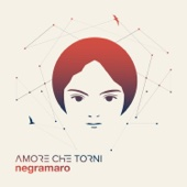 Negramaro - Amore che torni artwork