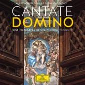 Sistine Chapel Choir & Massimo Palombella - Cantate Domino - La Cappella Sistina e la musica dei Papi  artwork