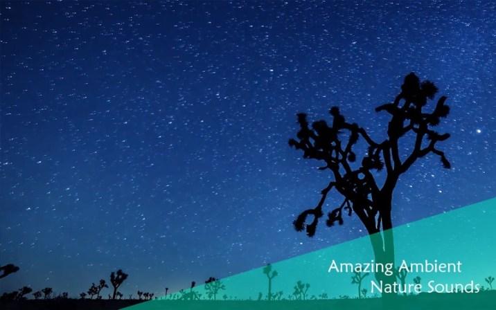 3_Chill_Relax_Night_Sky_Stars_Video_Sound.jpg