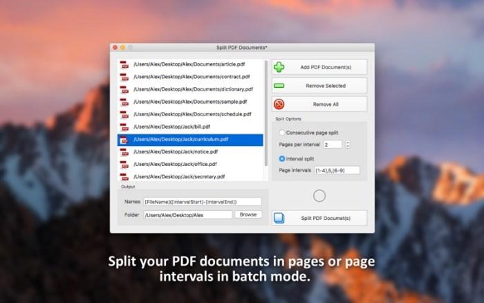 2_PDF_Plus_Merge_Split_Crop_and_Watermark_PDFs.jpg