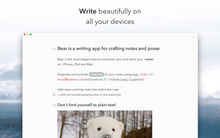 1_Bear.jpg