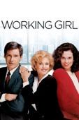 Mike Nichols - Working Girl  artwork