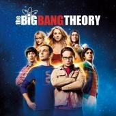 The Big Bang Theory - The Big Bang Theory, Season 7  artwork