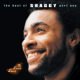 Download Shaggy - Boombastic MP3
