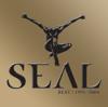 Seal - Seal: Best 1991-2004 (Deluxe Version)  artwork