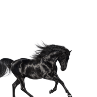 Lil Nas X - Old Town Road artwork