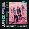 SECRET NUMBER - Who Dis?